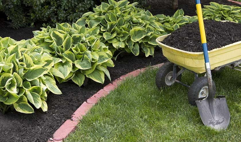 Make your garden bed altum s horticultural center and for Creating a flower bed