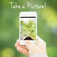 Tip2-Take-a-Picture-of-your-landscaping
