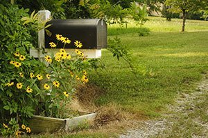hide-mailbox-with-landscaping