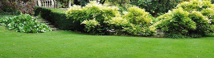 Top 5 Yard U0026 Garden Products