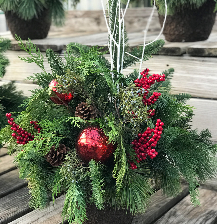 Altum's Holiday Red Porch Pot