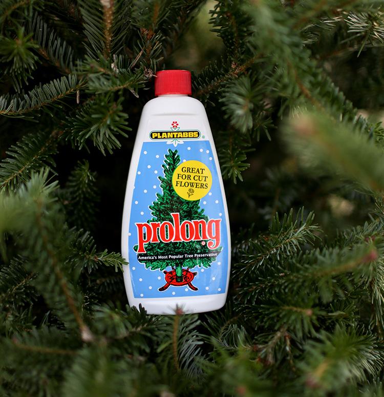 Christmas Tree Preservative.Prolong 8oz Seasonal Tree Preservative