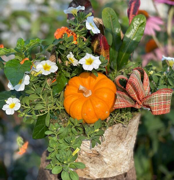 Artfully Arrangement Fall Planter